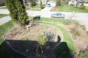 Front garden April 15 2010-1